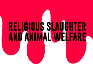 religious slaughter